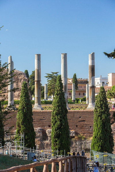 Another view of the Roman Forum.