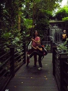 Being Tarzan on vines in the Airport Jungle in Malaysia.