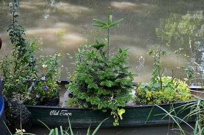 Canoe planter.