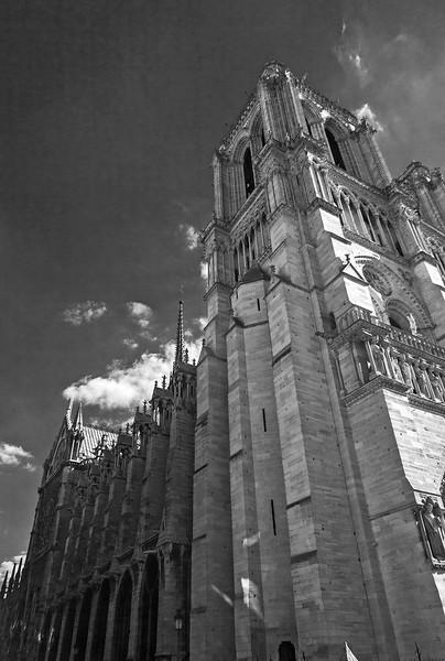 Left side of Notre Dame.