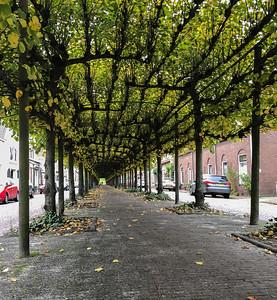 A main street in Willemstad
