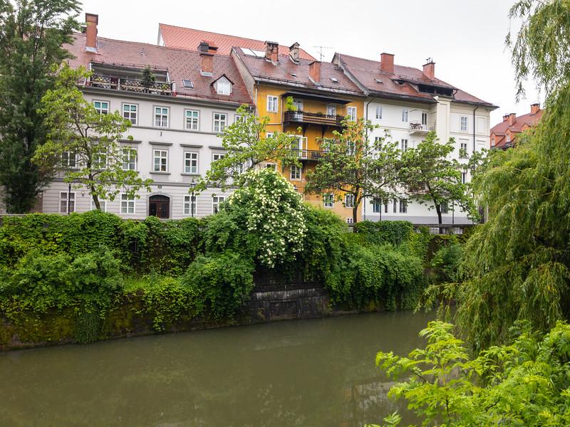 Ljubljanica River, Ljubjana