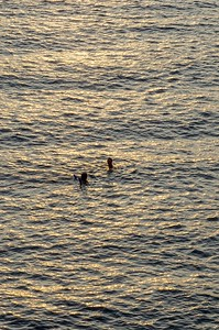 Swimmers at Camogli