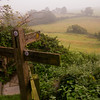 Which way to walk, Country Side in Southern England,