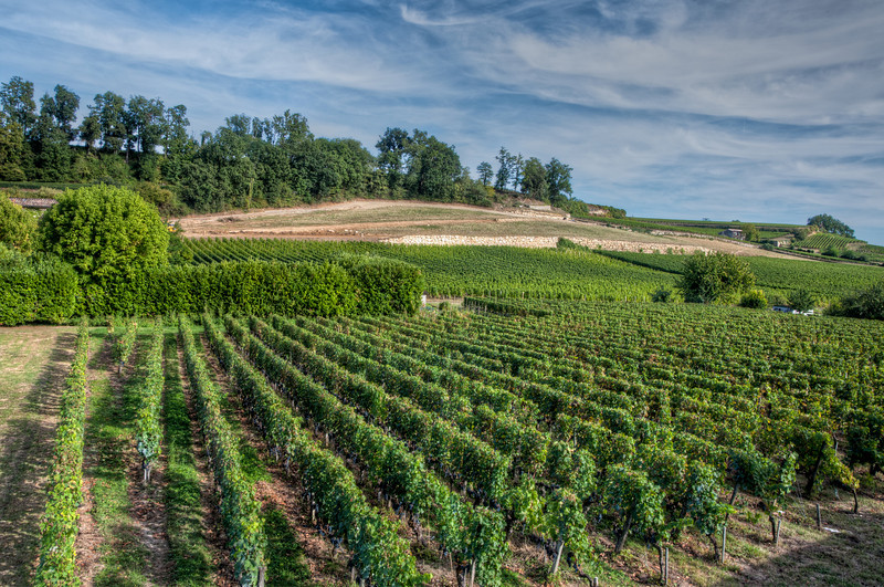 On our way out of St. Emilion, we walked to the train station and got some great views of the vineyards and country-side.
