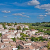 Looking out from the top of one of the towers in St. Emilion, you can see houses scattering the town and then vineyards, vineyards, and more vineyards.