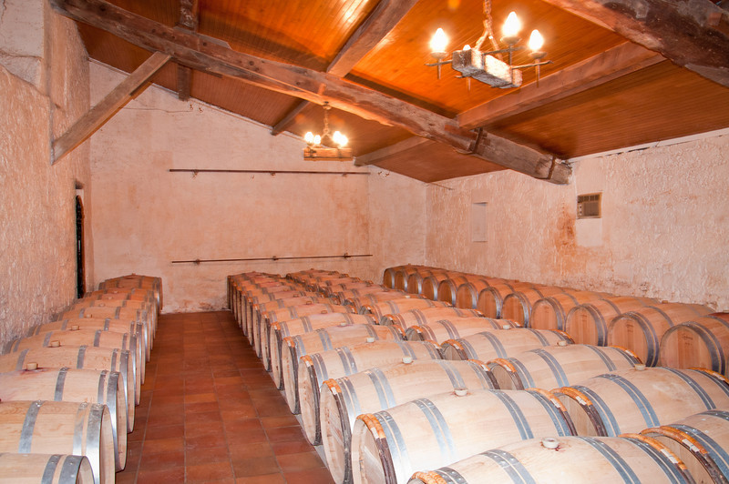 Our next stop on the wine tour was wine tasting at a local Chateau in the city. We got a great tour of where they make the wine, store it in barrells, as well as the huge underground cave that they use as a cellar.