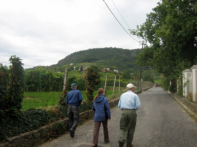 Walking up to Badacsony hill.