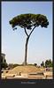 Rome, Palatine Hill