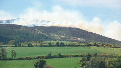 Gorse wildfires on the way to Dublin