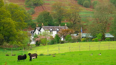 Ledard Farm