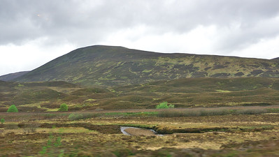 Moors on the way to Pitlochry