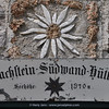 Dachstein Sudwand Hutte, 1910m (Leontopodium alpinum)