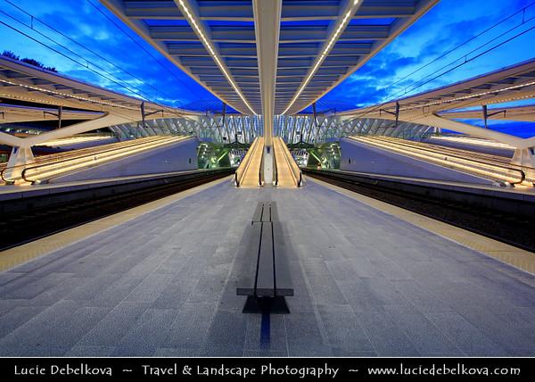 Belgium - Wallonia - Liège - Luik - Liege - Guillemins train Station in Liege designed by the famous spanish architect Santiago Calatrava
