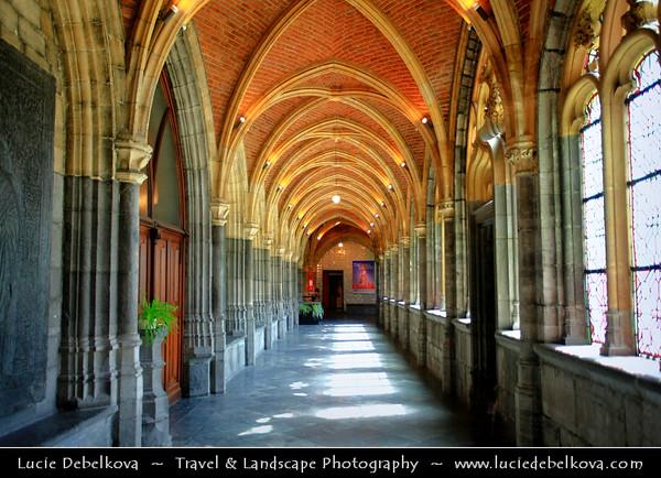 Belgium - Wallonia - Liège - Luik - Liege - Cathedrale Saint Paul at Place de la Cathedrale - Symbol of neo-gothic art