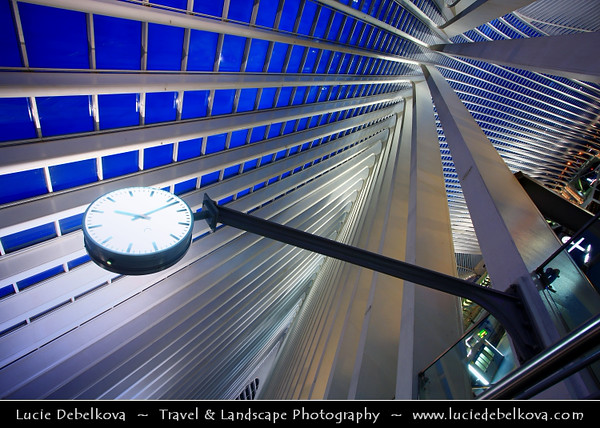Belgium - Wallonia - Liège - Luik - Liege - Guillemins train Station in Liege designed by the famous spanish architect Santiago Calatrava