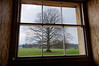View out on to the front lawn from the ground floor. <br /> <br /> Basildon Park manor house, Berkshire, England.