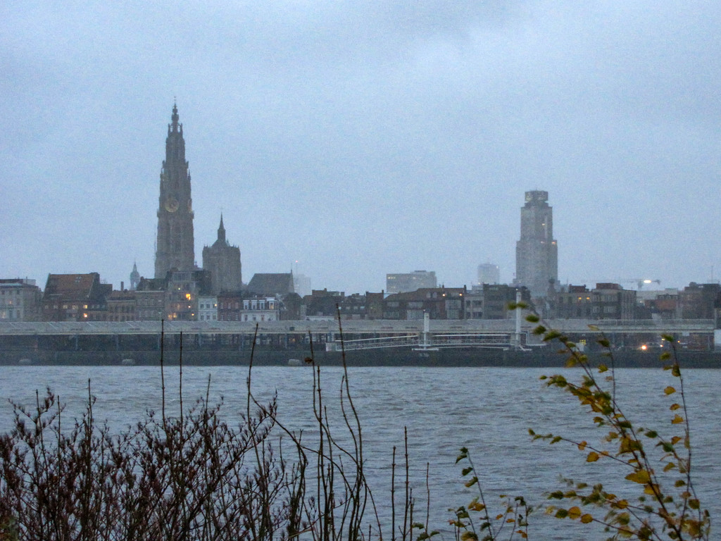 Looking back at the Antwerp skyline from the river's west bank.