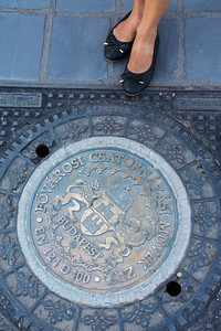 Dang, even the manhole covers in Budapest are fancy.