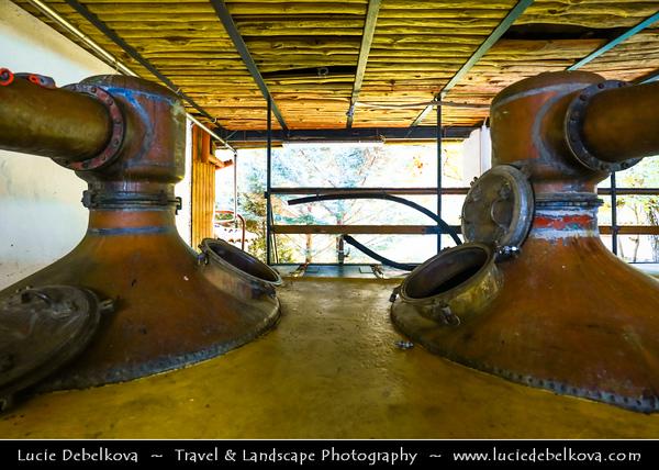 Eastern Europe - Bulgaria - България - Rose Valley - Розова долина - Rozova dolina - Old Enio Bonchev Distillery & Family Museum - Bulgarian Lavender & Rose Oil Distillery