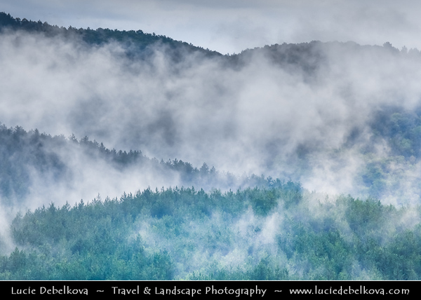 Eastern Europe - Bulgaria - България -  Rhodope Mountains - Fog descending over deep forest