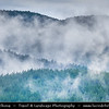 Eastern Europe - Bulgaria - България -  Rhodope Mountains - Fog descending over deep forest