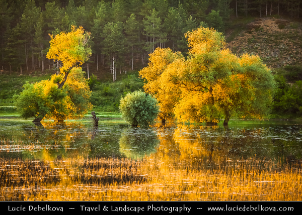 Eastern Europe - Bulgaria - България - Central Bulgaria - Warm evening light over magical lake with sunken trees