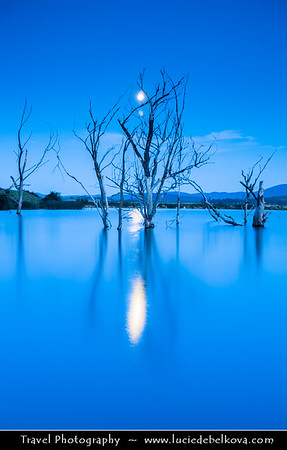 Eastern Europe - Bulgaria - България - Central Bulgaria - Moon Rising over Dead Trees in Magical Lake