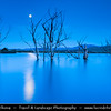 Eastern Europe - Bulgaria - България - Central Bulgaria - Moon Rising over Dead Trees in Magical Lake