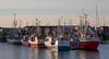 Bodø Marina