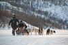 Husky Adventure, Kirkenes