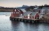 Selsøya