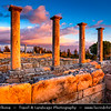 Cyprus - Κύπρος - Kýpros - The third largest island in the Mediterranean Sea - Limassol - Lemesos - Kourion - Κούριον - Curium - Historic Site with Ancient Ruins -  Former Greco-Roman city from antiquity until the early Middle Ages - Sanctuary of Apollo Hylates