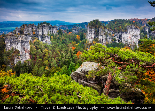 Europe - Czech Republic - Bohemia - Bohemian Paradise - Český ráj - Protected Area &  first nature reserve - UNESCO Geopark - Scenic area with bizarre rock formations - Hruboskalsko Rock Town - One of the best-known rock formations areas with impressive towers reaching up to 55 m and steep canyons during Autumn colors