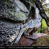 Europe - Czech Republic - Bohemia - Bohemian Paradise - Český ráj - Protected Area &  first nature reserve - UNESCO Geopark - Scenic area with bizarre rock formations, deep pine forests - Příhrazské skály - Duhová skalní brána - Duhovka - Rock Arch, natural rock formation called Rainbow Gate