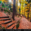 Europe - Czech Republic - Czechia - Bohemian Paradise - Český ráj - Protected Area & first nature reserve - UNESCO Geopark - Scenic area with bizarre rock formations - Malá Skála - Small town within Vranov Ridge during fall with warm autumn colors