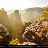 Europe - Czech Republic - Bohemia - České Švýcarsko Národní park - Bohemian Switzerland National Park - Hilly climbing area around the Elbe valley - Elbe/Labe Sandstone Mountains - Bizarre & intriguing landscape with huge, smooth rocks & deep, narrow valleys & gorges during autumn
