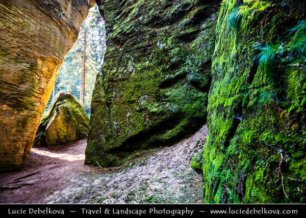 Europe - Czech Republic - Bohemia - České Švýcarsko Národní park - Bohemian Switzerland National Park - Hilly climbing area around the Elbe valley - Elbe/Labe Sandstone Mountains - Bizarre & intriguing landscape with huge, smooth rocks & deep, narrow valleys & gorges - Klenotnice - Rock amphitheater