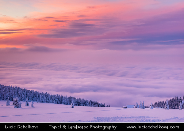Europe - Czech Republic - Czechia - Krkonošský národní park - Krkonoše Mountains National Park - KRNAP - KPN - Giant Mountains - Frozen Winter Wonderland - Spectacular landscape under fresh deep snow cover