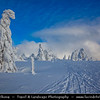 Europe - Czech Republic - Czechia - Krkonošský národní park - Krkonoše Mountains National Park - KRNAP - KPN - Giant Mountains - Frozen Winter Wonderland - Spectacular landscape under fresh deep snow cover