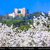 Europe - Czech Republic - Czechia - Jižní Morava - South Moravia - Státní hrad Buchlov - Buchlov castle - One of oldest castles in the country & key point of interest in Chřiby mountains surrounded by Cherry Blossoms Trees in Full Bloom during spring time