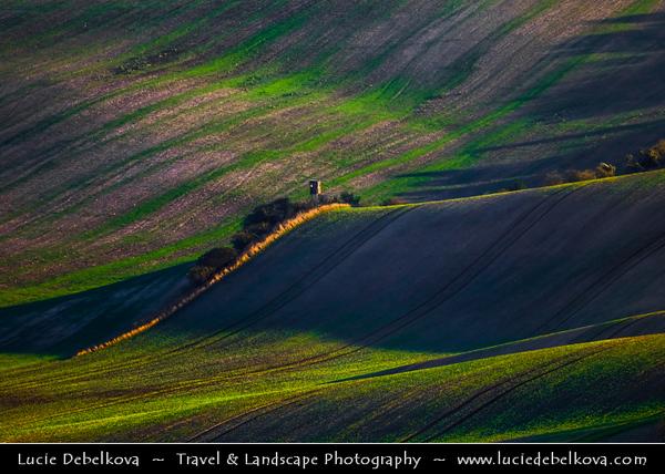 Europe - Czech Republic - Czechia - Jižní Morava - South Moravia - Moravské Toskánsko - Moravian Tuscany - Soft rolling hills and fields - Slavná Moravská pole - Wooden Lookout Tower