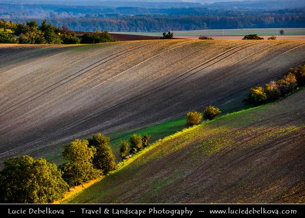 Europe - Czech Republic - Czechia - Jižní Morava - South Moravia - Moravské Toskánsko - Moravian Tuscany - Soft rolling hills and fields - Slavná Moravská pole