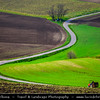 Europe - Czech Republic - Jižní Morava - South Moravia - Soft rolling, bright green hills during spring time