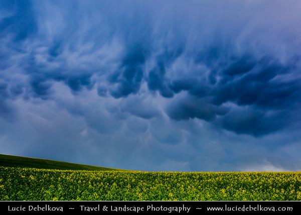 Europe - Czech Republic - Jižní Morava - South Moravia - Mammatus clouds during spring thunderstorm