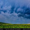 Europe - Czech Republic - Jižní Morava - South Moravia - Mammatus clouds during spring thunderstorm