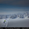 Europe - Czech Republic - Czechia - South Bohemian Region - Jižní Čechy - Šumava Národní park - Sumava National Park - Bohemian Forest National Park - UNESCO protected biosphere reserve - Winter Landscape covered with fresh layer of snow