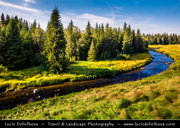 Europe - Czech Republic - Czechia - South Bohemian Region - Jižní Čechy - Šumava Národní park - Sumava National Park - Bohemian Forest National Park - UNESCO protected biosphere reserve - Modrava - Roklanský potok - Roklan stream