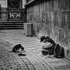 Beggar and Dog