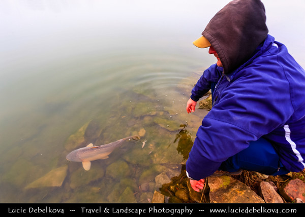 Europe - Czech Republic - Central Bohemian Region - Čelákovice - Malvíny - Lake in former sand quarry during misty day - Fishing in the mist - carp